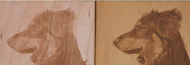 Wood Laser Engraving Photograph