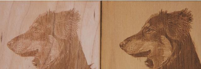 Wood Laser Engraving Photograph